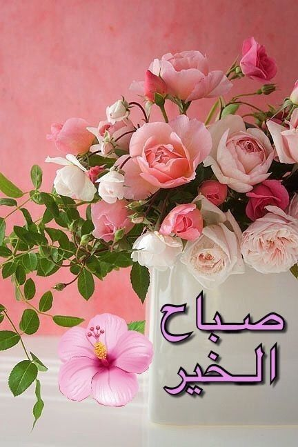 Pin By Aboodi Kassem On صباح الخير Good Morning Flowers Good Morning Arabic Good Morning Images