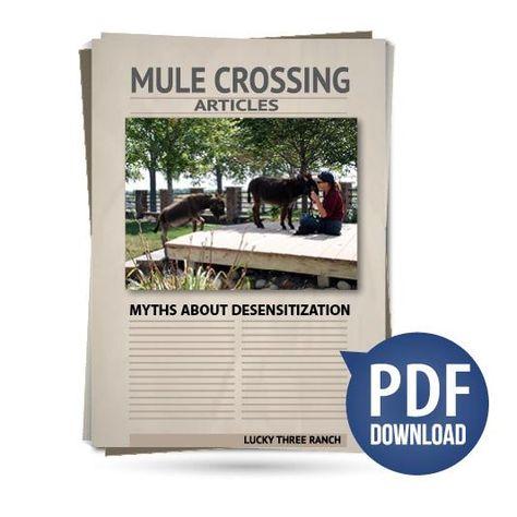 Myths About Desensitization
