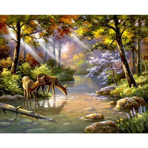 Deer Drinking From The River Adult Diy Paint By Numbers Kit Landscape Paintings Landscape Pictures Painting