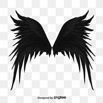 Black Fallen Angel Wing Feather Angel Angel Wings Spreading Wings Png Transparent Clipart Image And Psd File For Free Download Feather Angel Wings Fallen Angel Cartoon Angel Wings