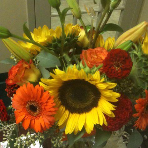 Sunflower one of my favorite