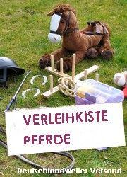 Bibi und Tina Pferdeparty zum Geburtstag