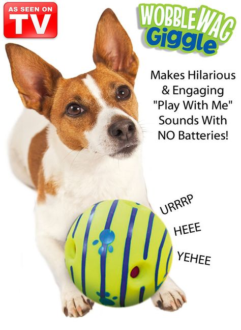 Wobble Wag Giggle™ at http://www.AmeriMark.com. Keep your dog entertained and out of trouble while you're away with the fun, interactive Wobble Wag Giggle™ ball. #giggleball #asseenontv #wobbleball #wobblewagball #amerimark #dogtoy #dogball