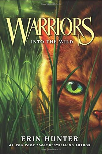 into the wild book free download