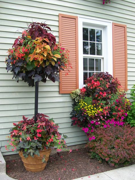 container planting Pamela Crawford style