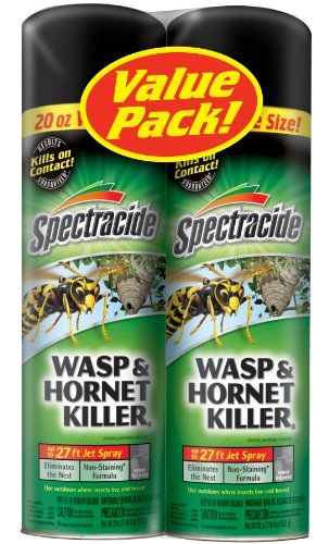 Spectracide Wasp and Hornet Killer, Twin Pack, 2 to 20-Ounce Spectracide http://www.amazon.com/dp/B0050D0XZ4/ref=cm_sw_r_pi_dp_hnXnvb00A35Z0