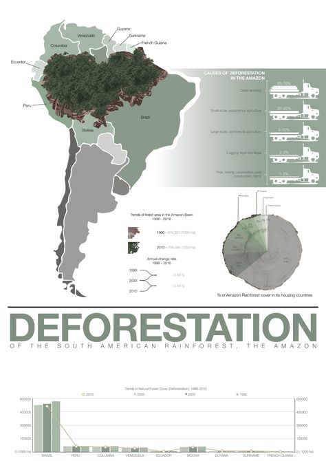 Infographic Poster Design Deforestation Of The Amazon Rainforest