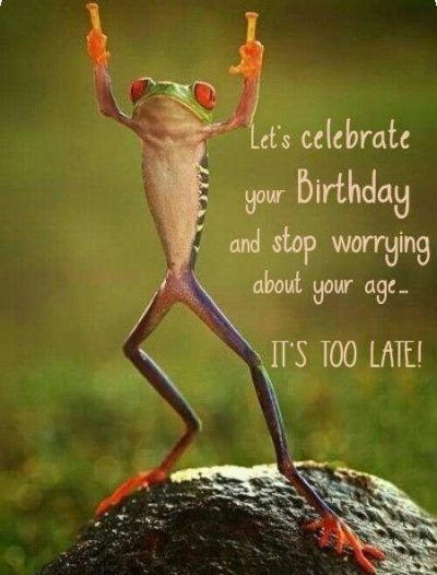 50 Happy Birthday Coffee Memes And Funny Images Wishing Happy Birthday Meme Happy Birthday Quotes Funny Happy Birthday Man Happy Birthday Funny Humorous