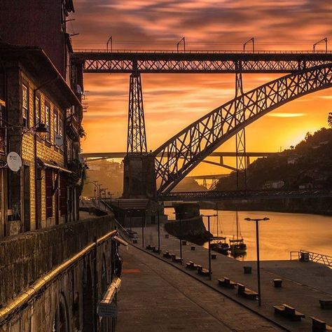 If this is our karma let's Porto make us happy  #visitporto #followporto -- Se este é o nosso karma vamos deixar que o Porto nos faça felizes  #visitporto #followporto  Credits: @hecktictravels #igers_porto #igersportugal #igersopo #igers_opo #ig_travel #travelgram #igers_travel #travel #explore  #traveling #momondo #natgeotravel #viagem #tourism #turismo #visitportugal #travelbloggers #traditional #lonelyplanet #porto #beautifuldestinations #vsco #citybreak  #worldheritage #karma #letsbehappy #