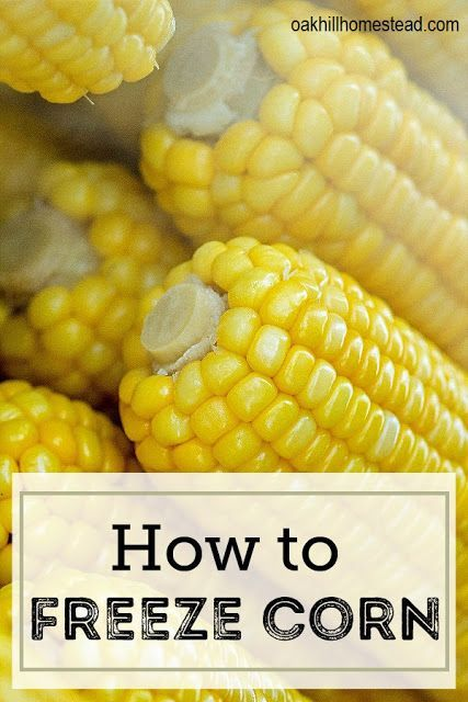 How To Freeze Corn Frozen Corn Blanching Corn Corn