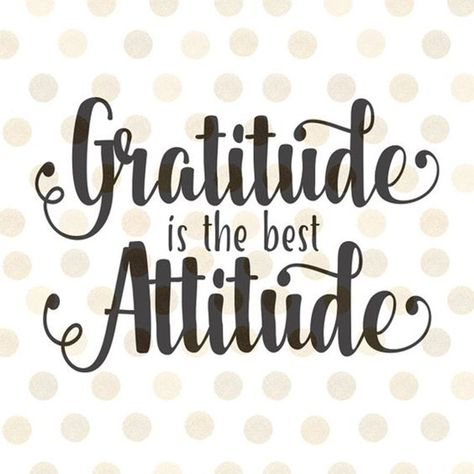 best gratitude quotes thanksgiving quotes thankful memes to share social media feeling thankful Love Quotes For Her, Great Quotes, Quotes To Live By, Life Quotes, Qoutes, Crush Quotes, Relationship Quotes, Reality Quotes, Faith Quotes