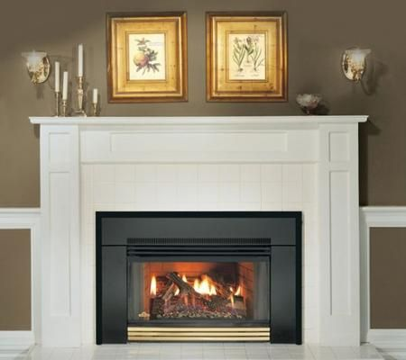 Looking For Gas Fireplace Tune Up Inspection And Cleaning Services Keep Your Fireplace Attractive Gas Fireplace Insert Fireplace Inserts Fireplace Surrounds