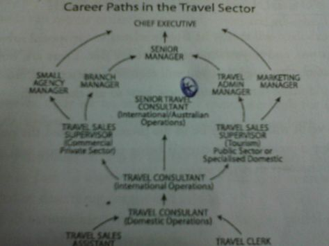 The Diagram Below Shows Career Paths In The Travel Industry Write A Report With Images Career Path Travel Industry Travel Marketing