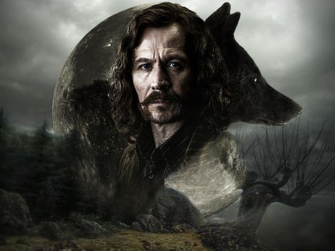 Which Marauder From Harry Potter Are You Harry Potter Quiz Harry Potter Sirius Harry Potter Movies