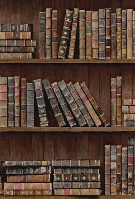 Book Shelves Wallpaper by Mindthegap