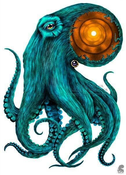 Pin By Ken Bills On Pictures Octopus Drawing Psychedelic Art Elephant Art