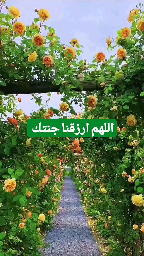 اللهم ارزقنا جنتك