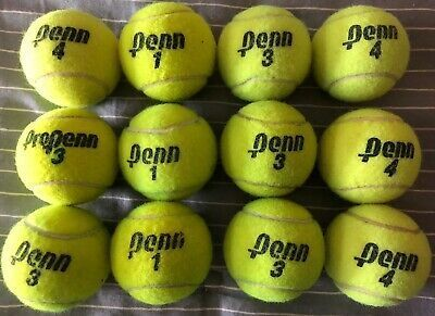 12 Clean Used Tennis Balls Dog Toys Walker Chair Leg In 2020 Tennis Tennis Balls Tennis Ball