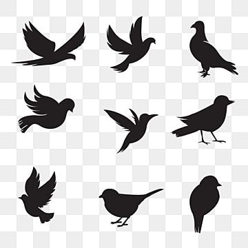 Bird Silhouette Collection Bird Silhouette Bunny Png And Vector With Transparent Background For Free Download Flying Bird Silhouette Bird Silhouette Silhouette Art