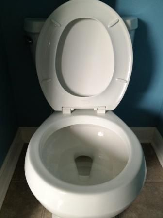 sprinkle the inside of the bowl with baking soda then spray with vinegar. let the foam work for a few minutes then scrub with a toilet brush. then spray down the whole toilet with vinegar and wipe clean