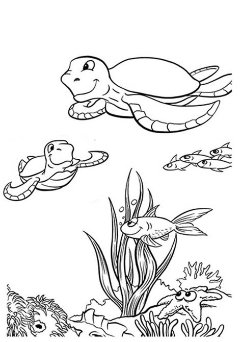 print coloring image - MomJunction | Turtle coloring pages ...