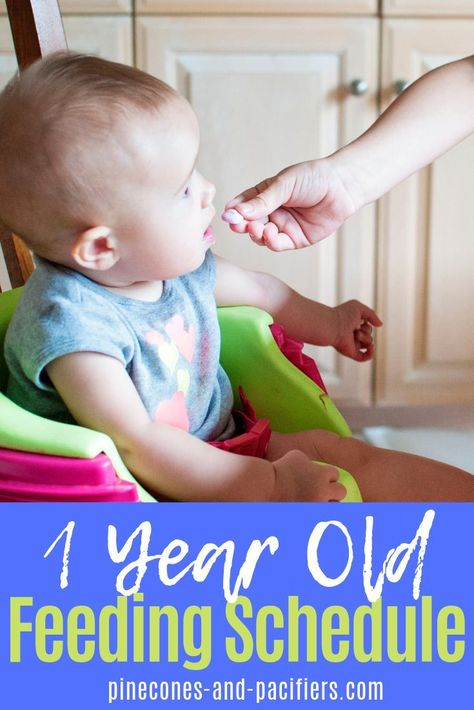Pin On Feeding Your Toddler