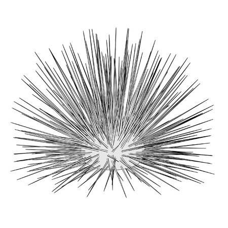 Cartoon Image Of Sea Urchin Sea Art Sea Urchin Sea Design