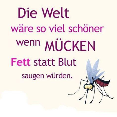 Deutsch Time (@DeutschTime) | Twitter
