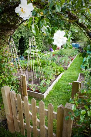 This fenced in garden is made from picket cedar wood fencing and 4x4 posts.