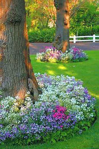 Big Tree With Flowers Around Flowerbed Flowerpot Planter Gardens Gardenideas Gardeningtips Decorh Landscaping Around Trees Planting Flowers Shade Garden