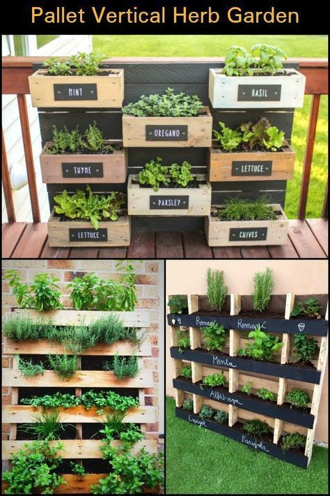 How Clever Is This A Vertical Herb Garden Made From Recycled Pallets Recyclingpallets Herbgarde Palette Herb Garden Herb Garden Pallet Vertical Herb Garden