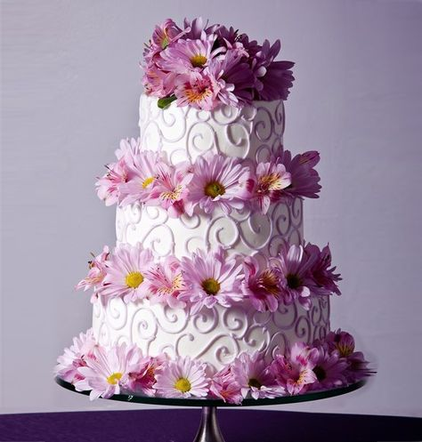 Pretty Lilac Daisies and Scroll Work Cake Picture