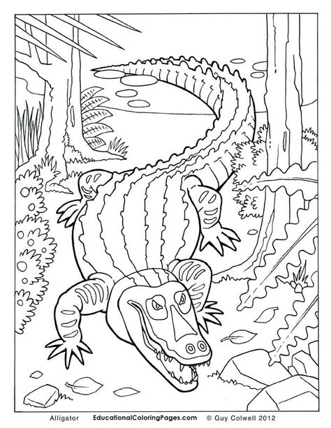 Crawly Creepers Book Two Coloring Pages Animal Coloring Pages For Kids Animal Coloring Pages Coloring Pages Cute Coloring Pages