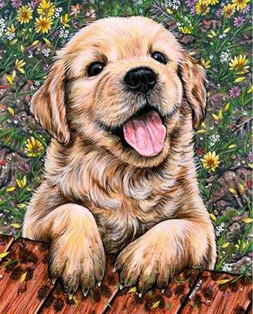 Animals Diamond Painting 3 Puppy Art Dog Paintings Dog Art