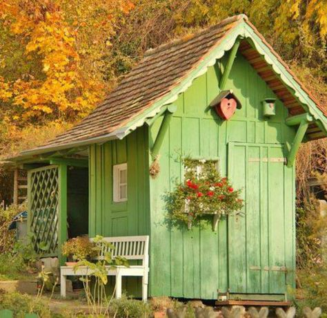 Little Green Shed ....