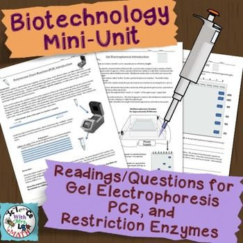 Biotechnology Mini Unit Pcr Gel Electrophoresis And Restriction Enzymes Biotechnology Lessons Biotechnology Mini Units