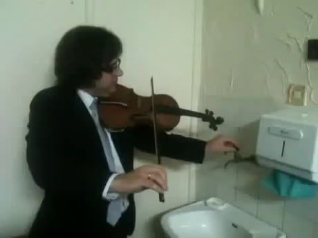 Duet With A Sink 1 21 Best Funny Pictures Funny Meme Pictures Violin
