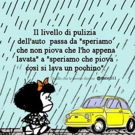 320 idee su Mafalda 1 | citazioni divertenti, immagini divertenti, vignette