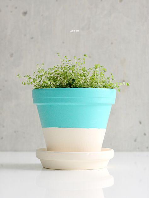 DIY: terracotta plant pots