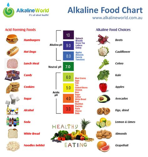 Acidic Foods  Google Search  Healthy Eating    Acidic