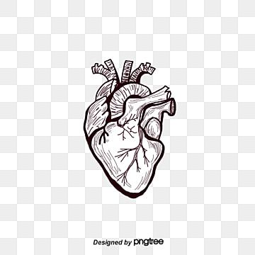 Fig Painted Black Heart Heart Human Body Organ Png Transparent Clipart Image And Psd File For Free Download Heart Hands Drawing How To Draw Hands Black Heart