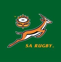 South Africa Rugby Logos Rugby Logo South Africa Rugby Springbok Rugby