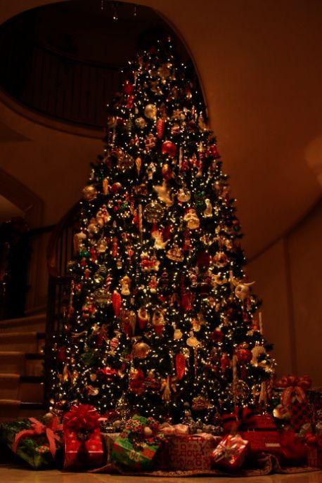 U Cut Christmas Trees.Pin On Fabulous Christmas Trees