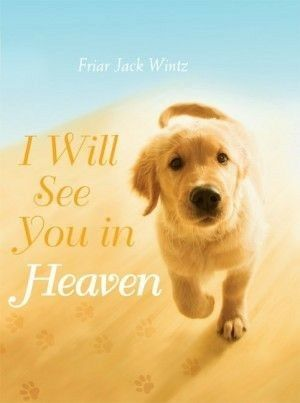 Grief For Losing A Animal Who You Loved So Dearly Dog Heaven