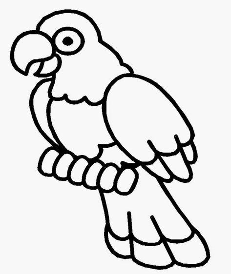 35 Trend Terbaru Mewarnai Burung Kakak Tua The Toosh