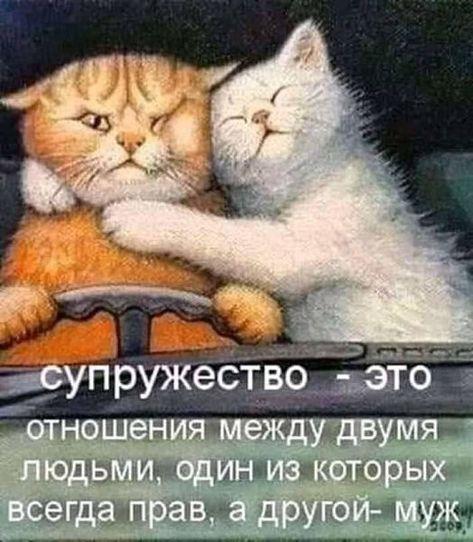 https://i.pinimg.com/474x/9b/ab/18/9bab18887f2868afe7197c84d05ea71c.jpg