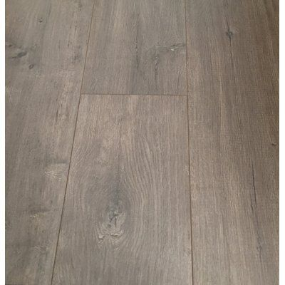 Christina Son European Oak 8 X 49 X 12mm Laminate Flooring In Beige Set Of 4 Color Gray Oak Laminate Laminate Flooring Oak Laminate Flooring