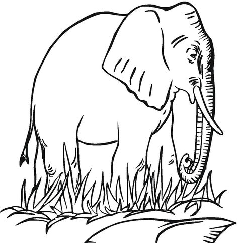 printable elephant colouring sheets in 2020 with images  elephant coloring page cartoon