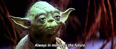 Expectation You Will Be Wise Like Yoda With Images