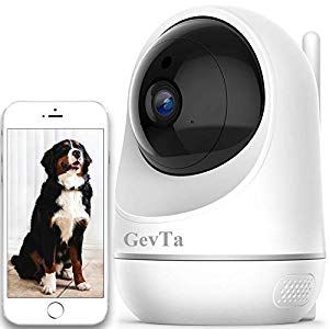 Gevta Pet Camera Fhd Dog Camera Wifi Pet Monitor Indoor Cat Camera Night Vision 2 Way Audio And Motion Detection Dog Supplies Online In 2020 Cat Camera Pet Monitor Pet Camera